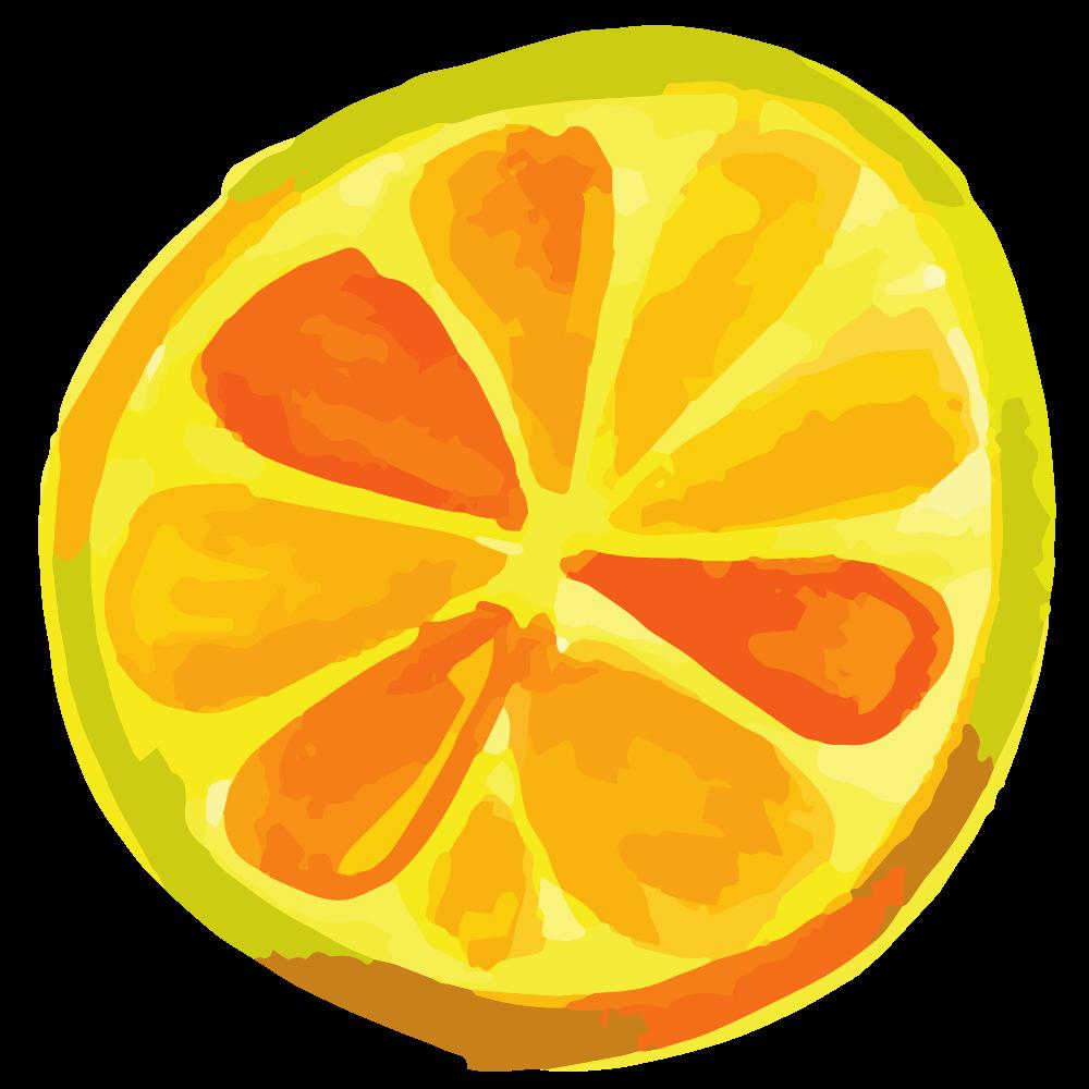 bunt genießen icon Orangenscheibe